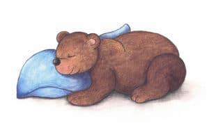 Ukládání zvířátek k zimnímu spánku